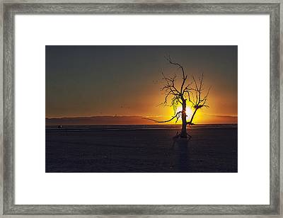 Life On Mars Framed Print