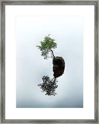 Life On The Batsto Framed Print by Dawn J Benko