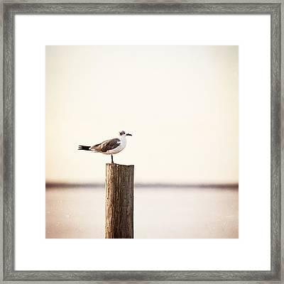 Life On The Bay Framed Print by Carolyn Cochrane