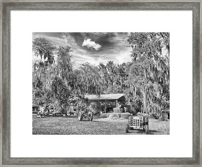 Framed Print featuring the photograph Life On The Farm by Howard Salmon