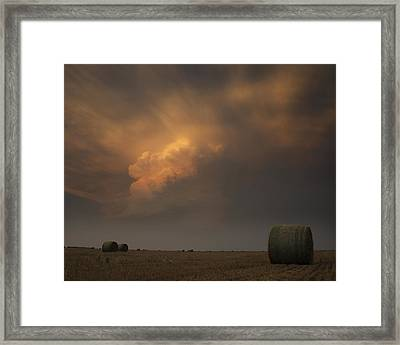 Life On The Plains Framed Print