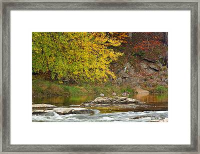 Life On The River Framed Print by Bill Wakeley