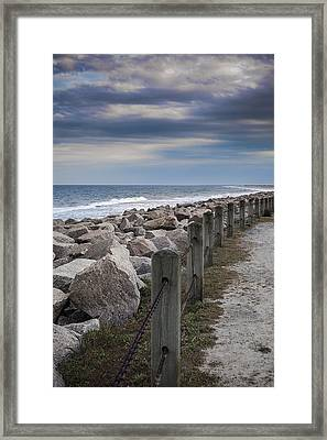 Life On The Rocks Framed Print by Chris Brehmer Photography