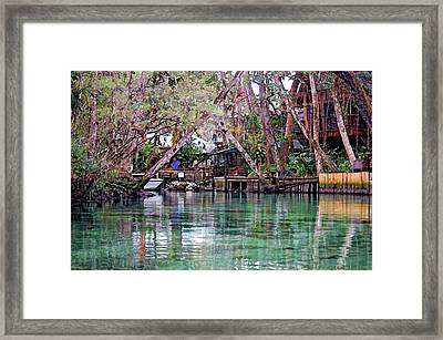 Life On Weeki Wachee Springs Framed Print