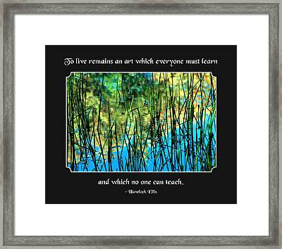Life Remains An Art Framed Print by Mike Flynn