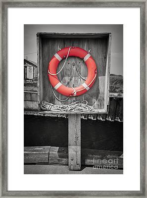 Life Saver Framed Print by Elena Elisseeva