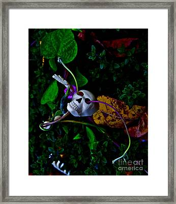Life Through Death Framed Print by Xn Tyler