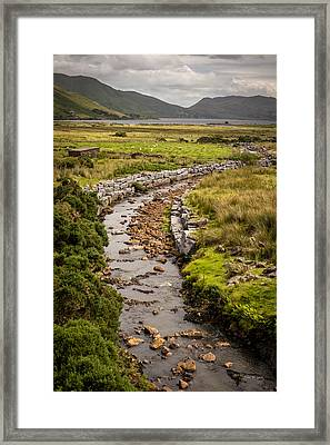 Life To The Glen Framed Print by Tim Bryan