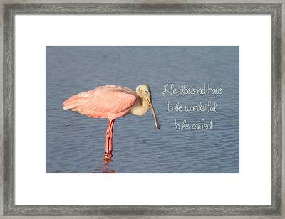 Life Wonderful And Perfect Framed Print