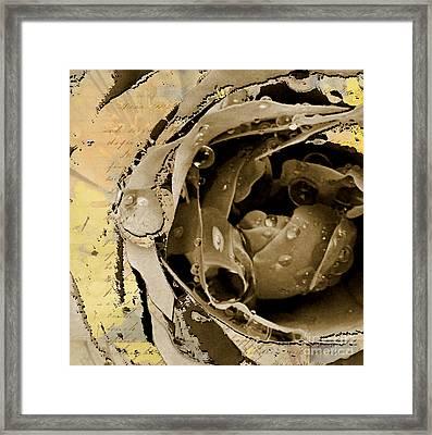 Life Framed Print by Yanni Theodorou