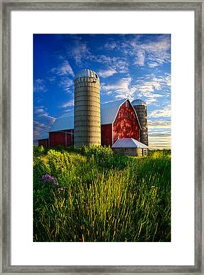 Lifelong Memories Framed Print