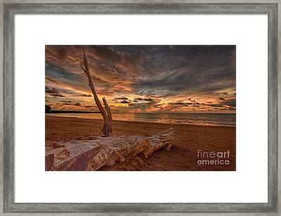 Life's A Beach Framed Print by Pete Reynolds