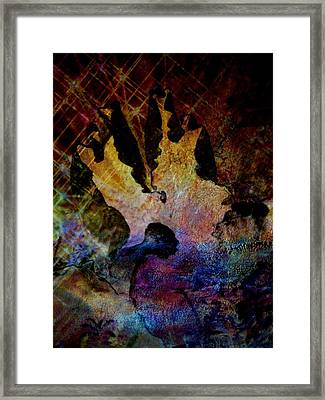 Life's Challenges Framed Print by Shirley Sirois