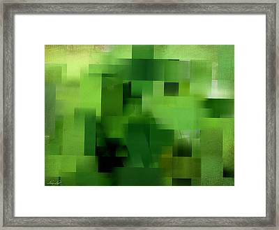 Life's Color Framed Print by Lourry Legarde