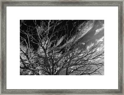 Framed Print featuring the photograph Lifes End by Eric Rundle