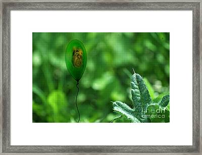 Lifes Little Breezes Framed Print by The Stone Age