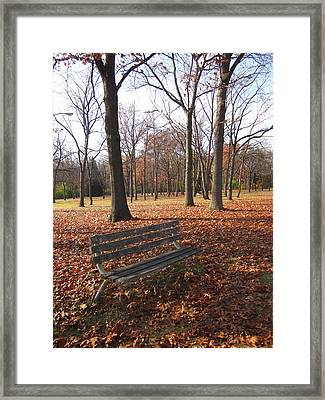 Life's Russet Hue Framed Print by Guy Ricketts