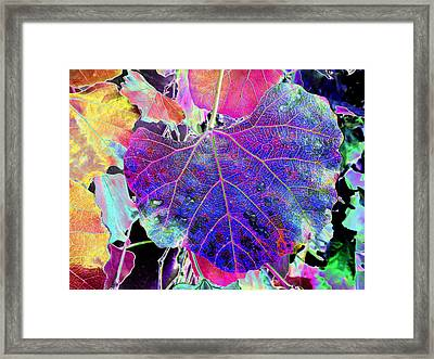 Life's Vein Framed Print by Kenneth James