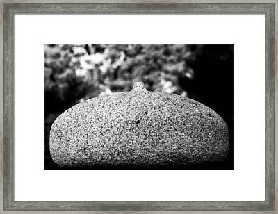 Lifestone Framed Print