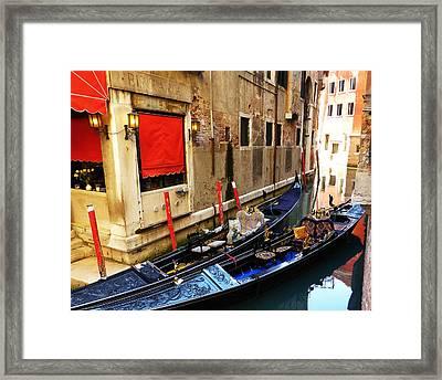 Lifestyles  Framed Print