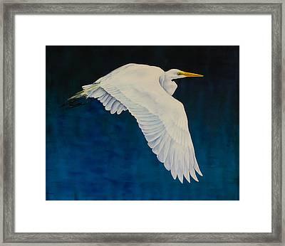 Evening Flight Framed Print