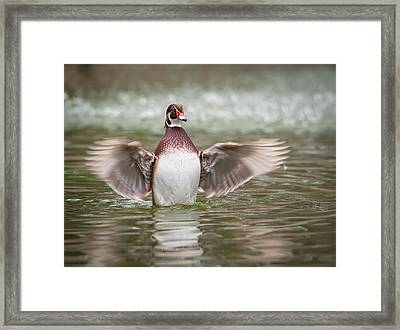 Lift Off Framed Print