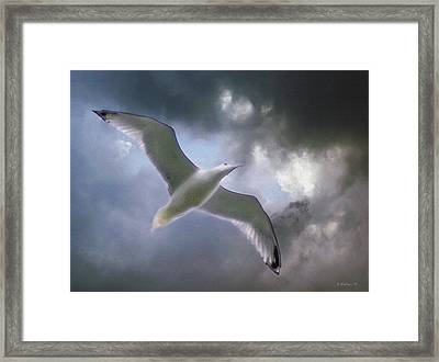 Lift - Oil Paint Effect Framed Print by Brian Wallace