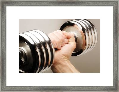 Lifting Weights Framed Print by Chris and Kate Knorr