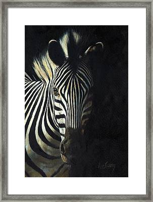 Light And Shade Framed Print by David Stribbling
