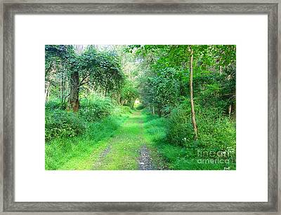 Framed Print featuring the photograph Light At The End Of The Tunnel by Becky Lupe