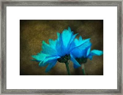 Light Blue Framed Print