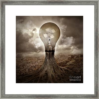 Light Bulb Growing An Idea In Nature Framed Print by Angela Waye
