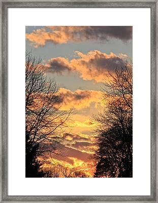 Light Catcher Framed Print by Julie Andel