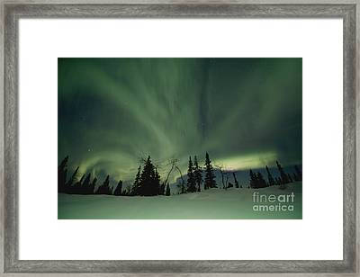 Light Dancers Framed Print
