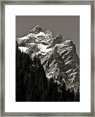 Light Dusting Framed Print by Gael Graysen