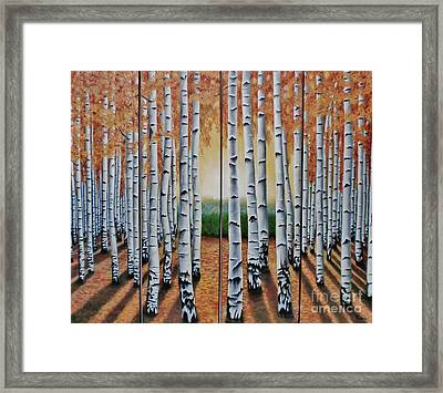 Light Entrance Framed Print by Paula Ludovino