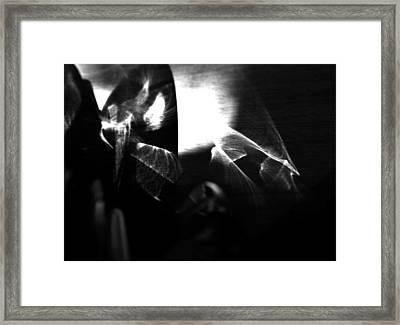Light Filtering In Framed Print by Tara Miller