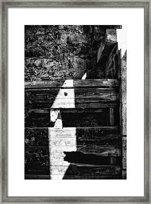 Light Finds A Way Framed Print