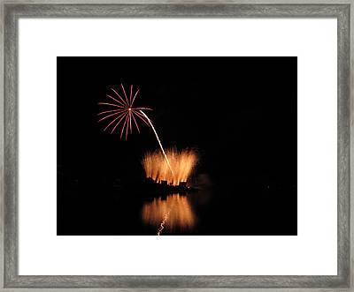 Light Flower Framed Print by Donnie Freeman