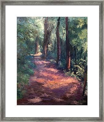Light For My Path Framed Print by Gail Kirtz