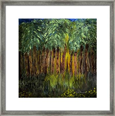 Light In The Forest Framed Print by Dick Bourgault