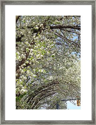 Framed Print featuring the photograph Light In The Tunnel by Christina Verdgeline