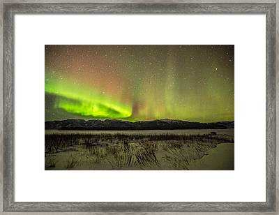 Light Loops Framed Print