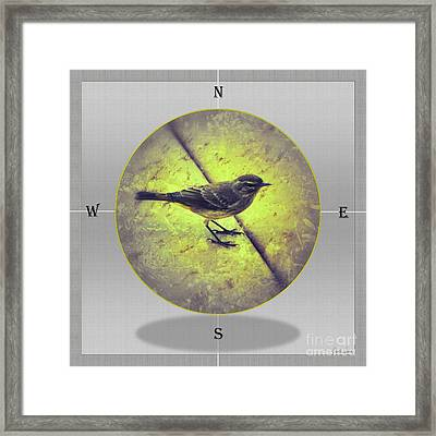 Framed Print featuring the photograph Light My Way by Darla Wood