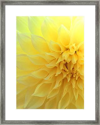 Light Of Faith Framed Print