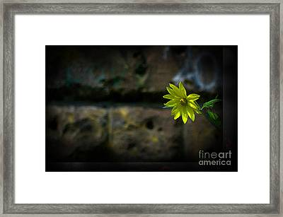 Light On The Dark Side Framed Print by The Stone Age
