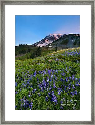 Light On The Mountain Framed Print by Mike Dawson