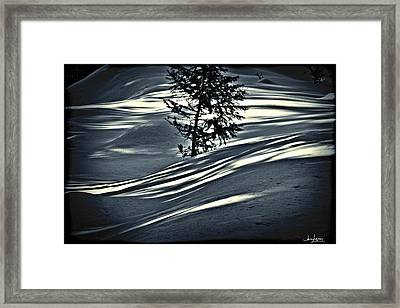 Framed Print featuring the photograph Light On The Snow by Janie Johnson