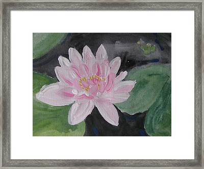 Light Pink Water Lily Framed Print by Vikram Singh