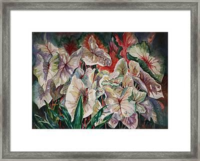 Light Play Caladiums Framed Print by Roxanne Tobaison